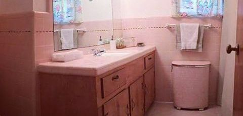 Save-the-pink-bathrooms-midcenturymodern-midcenturybath-savethepinkbathrooms-vintagetile-retrobathro