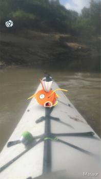 magikarp-in-boat