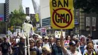 gmo-monsanto-protest-toronto