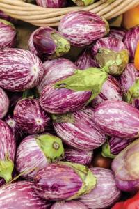 Bianca Rosa Eggplant