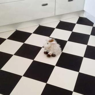 Black and white checkerboard floor tiles in kitchen