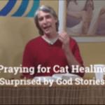 Prayer Video - Pray for Healing of a Cat