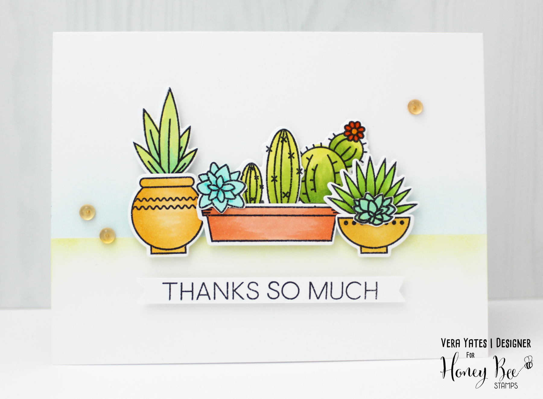 Thank You Succulents