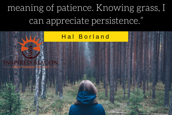 """""""Knowing trees, I understand the meaning of patience. Knowing grass, I can appreciate persistence.""""--Hal Borland"""