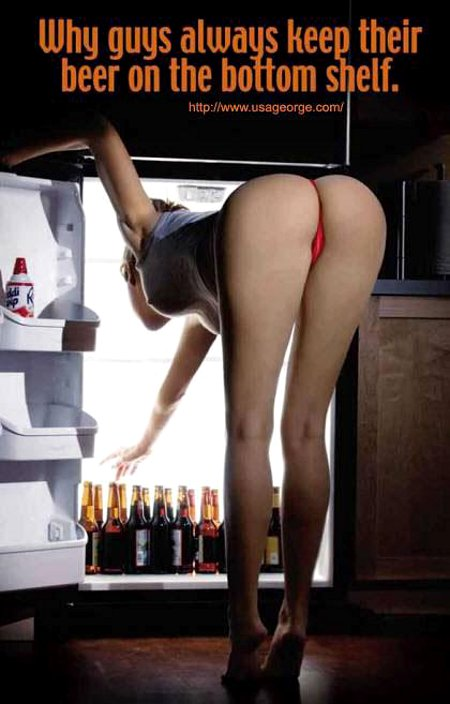 Bottom Shelf - Why Men Keep The Beer There