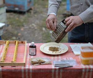 Imaginea thumbnail despre Cum se face tinctura de propolis acasa