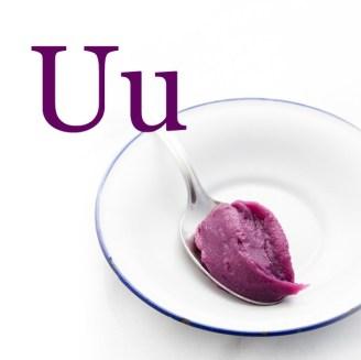 U-Glossary