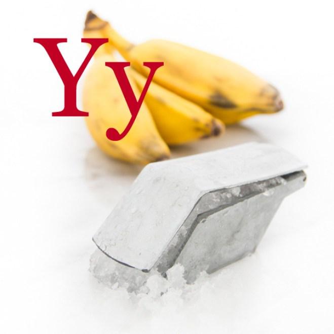 Y-Glossary