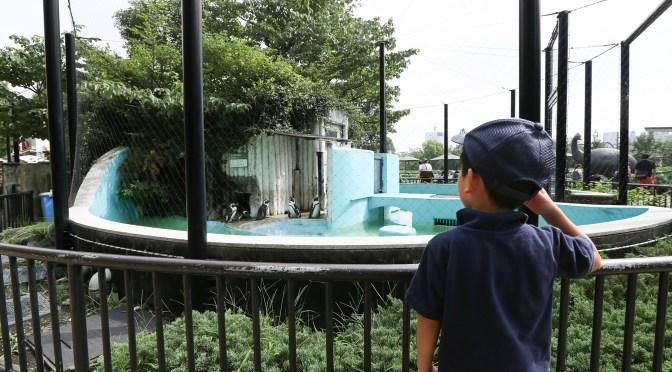 「上野動物園」での悲しいお知らせ…
