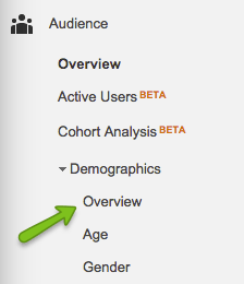 google-analytics-demographics-overview