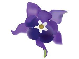 fleur_04-17_ancolie