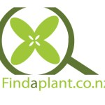 Find a plant – Quick Searches