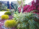 Designing with Plants - Sandra Batley
