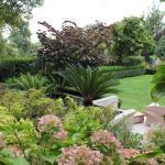 Leading garden designers to showcase work in November Festival