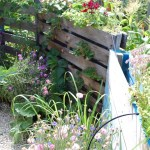 Ecological Garden Design -  Planning and planting for biodiversity and beauty