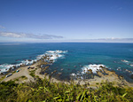 Have your say on restoration of Te Raekaihau Point