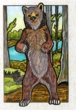 061213-bear