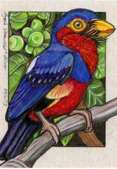 291113-barbet