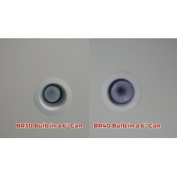 Ritzy Bulb Leds Lighting Supply Br30 Vs Br40 Lumens Difference Between Br30 Vs Br40 Bulb A Recessed Can Led An Alternative To houzz 01 Br30 Vs Br40