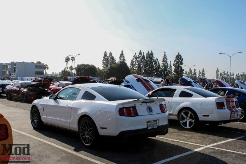Fabulous_Fords_2015_Mustangs-9