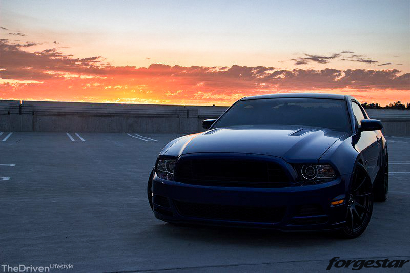 Ford_S197_Mustang_GT_50_Forgestar_CF10_20x95_20x11_315-35-20_Jurrian_Borla_Exhaust (12)