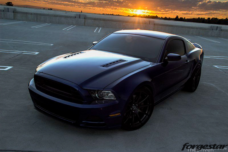 Ford_S197_Mustang_GT_50_Forgestar_CF10_20x95_20x11_315-35-20_Jurrian_Borla_Exhaust (13)