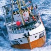 Cod fishing boat in the Atlantic with waves