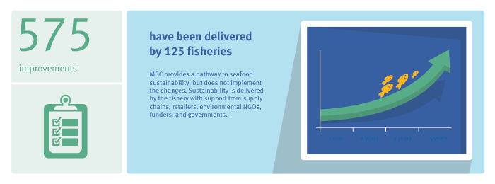 Global Impacts infographic showing 575 improvements by MSC-certified fisheriesi