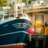 MSC certified Cornish hake fishing vessel, Ajax PZ36.