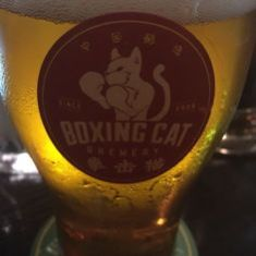 Boxing Cat Beer