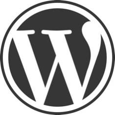 Bigger WordPress Logo