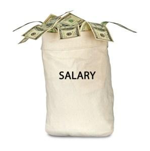 salary bag
