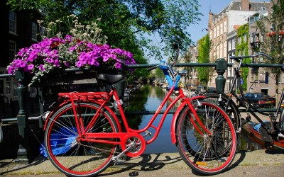 22 Reasons Why You'll Love Amsterdam