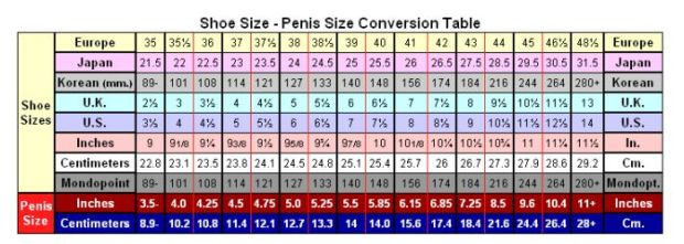 penis size chart by women