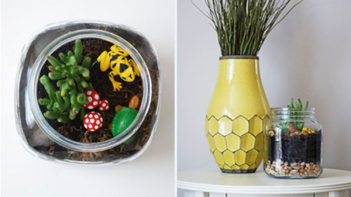 Terrariums-LittlePeanut