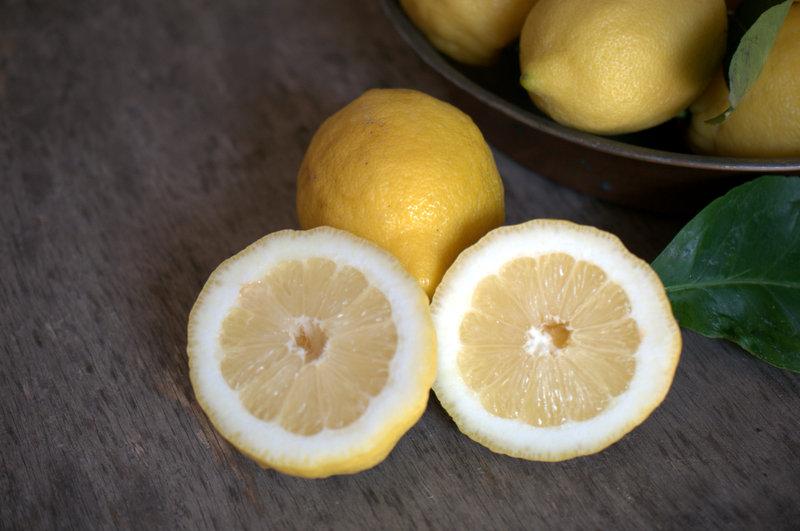 limoni igp sorrento 010