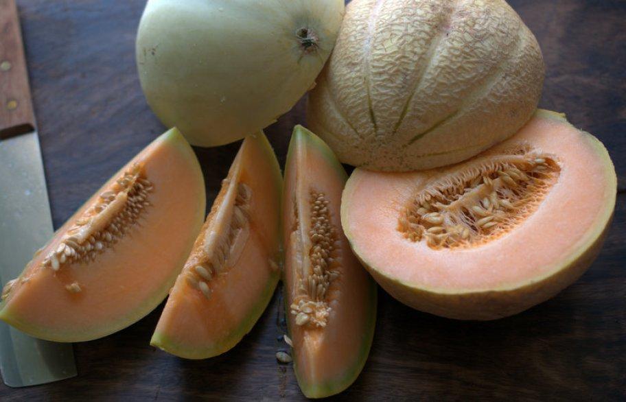 melanzane e meloni 009