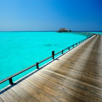 Purple Tips: cheap 2014 holidays you should book now