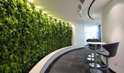 Small Of Vertical Gardens Walls