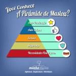 Pirâmide de Maslow com o Minha Visita