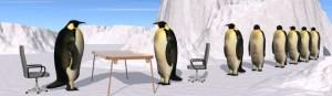 bigstock-Penguins-Recruiting-Interview-1619040