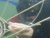 underwater-basket-weaving-1