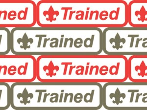 trained-patches-red-and-green