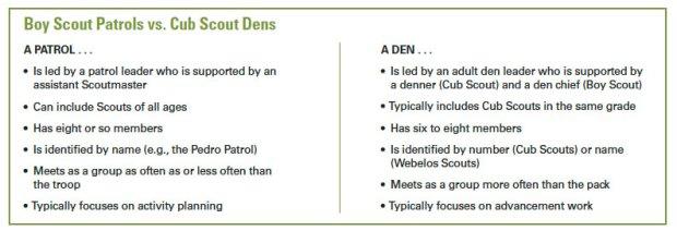 Boy-Scout-patrols-vs-Cub-Scout-dens