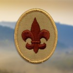 Scout-badge-changing