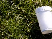 Styrofoam-cup-on-grass