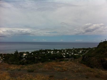 Ile de la Réunion - janvier 2011 - 525