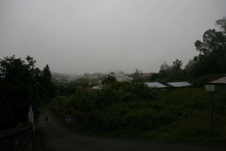 Ile de la Réunion - janvier 2011 - 593