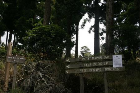 Ile de la Réunion - janvier 2011 - 045