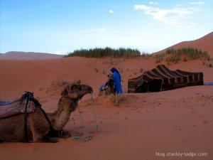 Bivouac dans les dunes de Merzouga (Maroc)